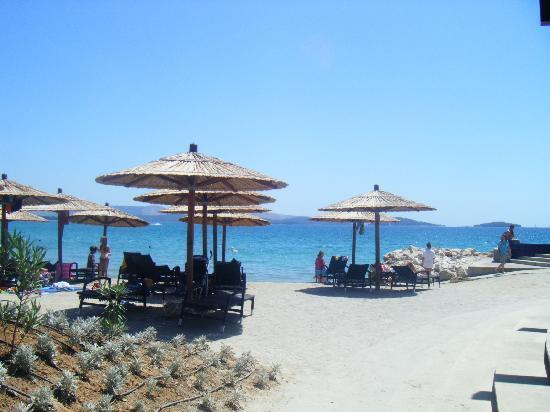 Solaris Hotel Niko: spiaggia sabbia riportata