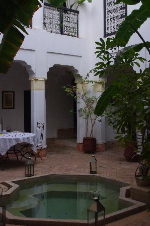 Riad Hayane: Riad's courtyard
