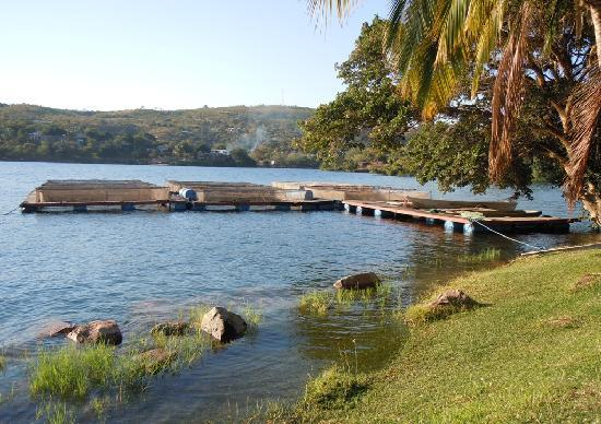 Lake Safari Lodge: Fish farm