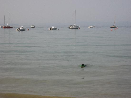 Hotel Alla Riviera : Gardasee sehr Hunde freundlich