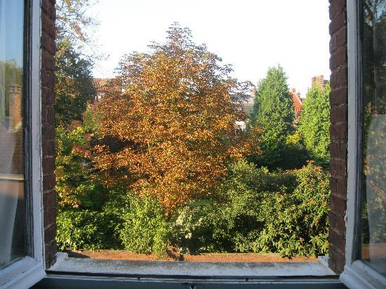 Au Paravent : The view from the window