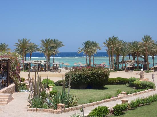 Kahramana Beach Resort : bar spiaggia relax