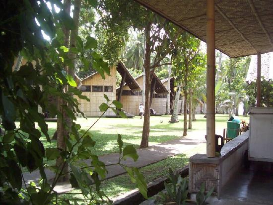 Bahay Bakasyunan Sa Camiguin: sight of other cottages from our porch/veranda