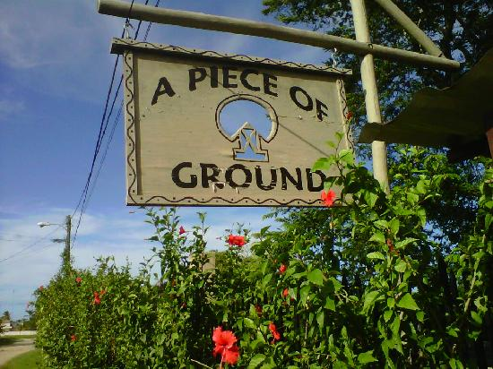 A Piece of Ground: Sign with hibiscus trees in front