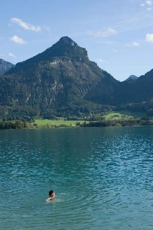 Landhaus zu Appesbach: The swimming scene