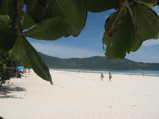 Lopes Mendes Beach: Paradise beach Lopes Mendes