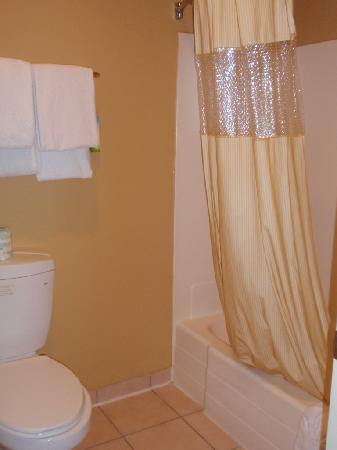 Days Inn Suites Anaheim At Disneyland Park: tub/shower