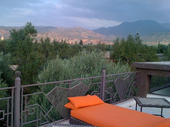 Domaine Malika: roof terrace