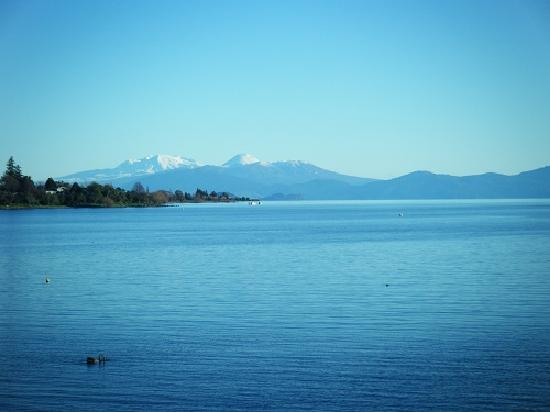Sacred Waters Taupo Luxury Apartments: View from the apartments.