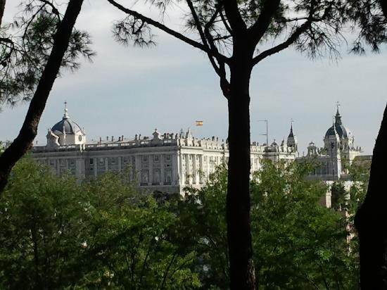 Palacio Real de Madrid: vista del palacio real y la almudena desde parque del oeste