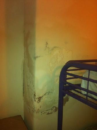 โรงแรมครอมเวลล์ คราวน์: damp in my room
