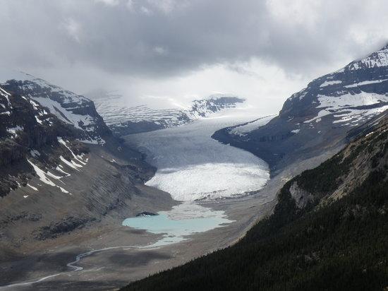 Aleja Icefields