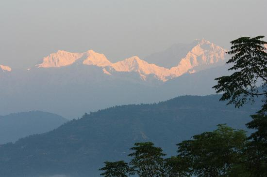 Glenburn Tea Estate: View of Kanchenjunga from our room!