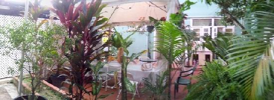 Samise Villa: backyard