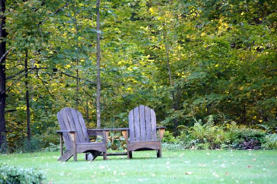 Buttonwood Inn on Mount Surprise: chairs for relaxing under the trees