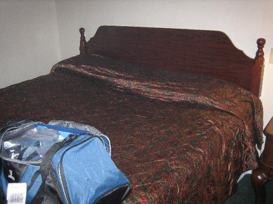 Red Roof Inn Binghamton North: Mattress with 6 inches of sag