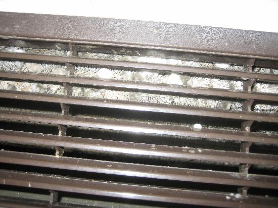 Red Roof Inn Binghamton North: Mold growth on A/C filter