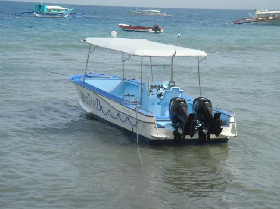 Mermaid Resort: New Dive Boat with Twin Outboards