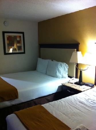 Holiday Inn Express Chicago - Schaumburg: room