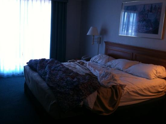 La Quinta Inn Ventura: King size room