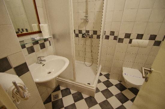 Hotel Slavija: バスルーム