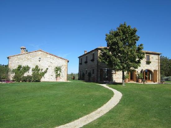 Podere Dionora : Another from the vineyard