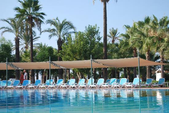 Paloma Grida Resort & Spa: бассейн