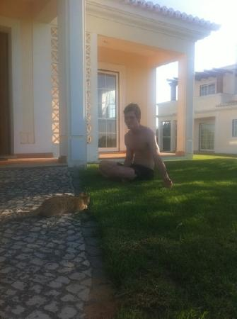 Colina da Lapa: one of the little cats that live in the complex