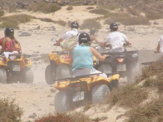 Eco Buggy & Camel Dunas: Desert
