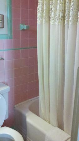 Vacationland Inn: Seems to have original tiles in the bathroom.