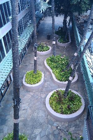 Kuhio Banyan Club Hotel