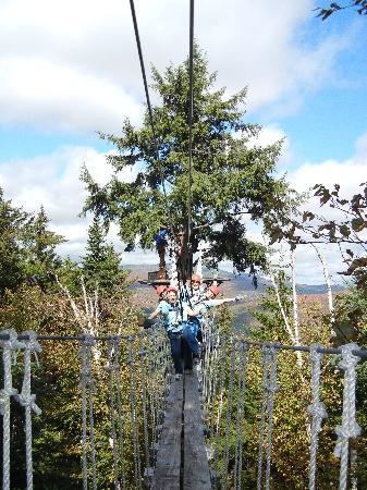 Bretton Woods Canopy Tour: Rope Bridge