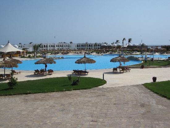 Gorgonia Beach Resort: vue sur la piscine et les logements