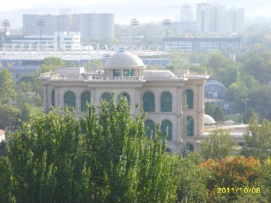 Rahat Palace Hotel: vista dal balcone