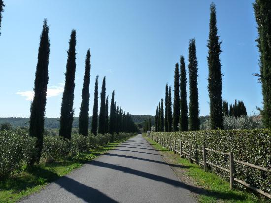 Villa Margherita: Ausflug in die Umgebung