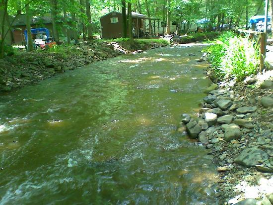 Wapwallopen, PA: Creek - Lower Level