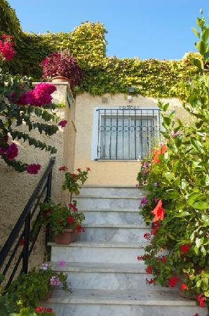 Villa Fleria Seaside Studios & Apts : Flowers everywhere!