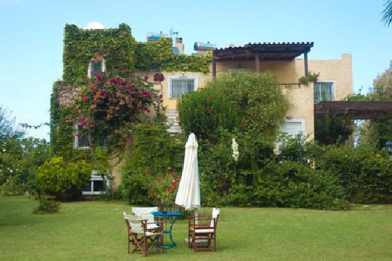 Villa Fleria Seaside Studios & Apts: House