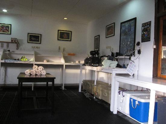 Lembeh Resort's spacious Camera Room
