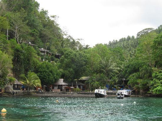 Lembeh Resort - hidden in the natural environment