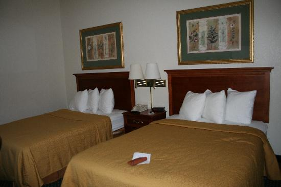 Quality Inn & Suites Lexington: Room