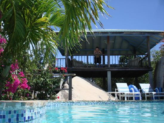 Guavaberry Spring Bay Vacation Homes: Upper Deck overlooking Pool