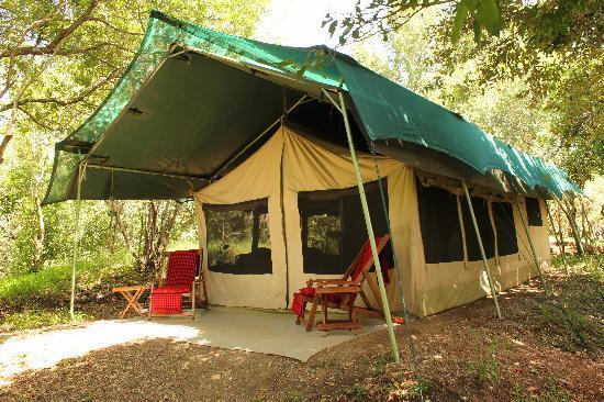 JK Mara Camp : Tent 11.
