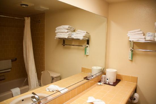Best Western Plus Yosemite Gateway Inn: Bathroom. It's merely Ok. Nothing special.