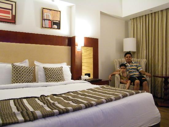 Sarovar Portico Jaipur: the room