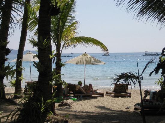 Argonauta Boracay: White Beach Boracay