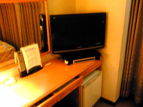 Royal Okayama Hotel : TV