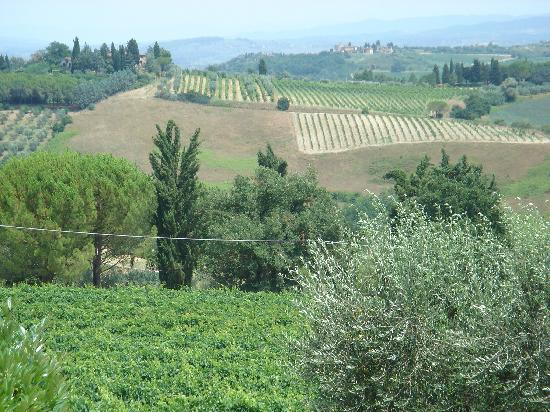 Guardastelle Vineyard: Breathtaking view from the winery.