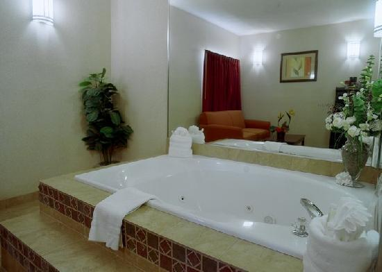Holiday Inn Express Palestine: the tub
