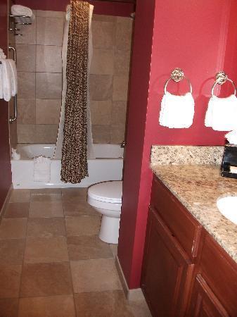 كلاريون كولكشن هوتل أرلينجتون كورت سويتس: Bathroom
